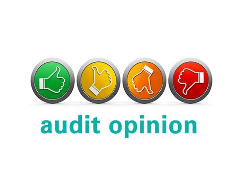 Audit opinions: How your financial statements measure up