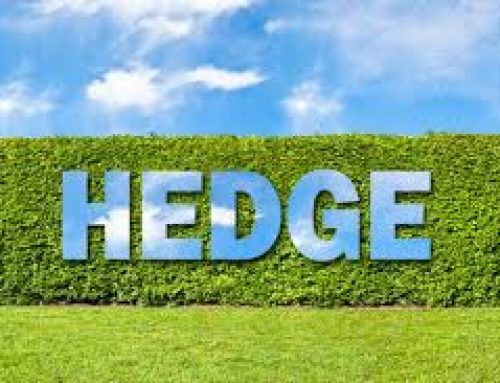 Public Companies to Disclose Stock Hedging Policies and Practices