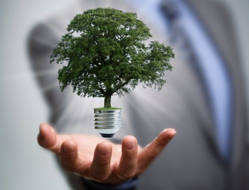 Top 5 Reasons Why Sustainability Reporting is Relevant to Every Business