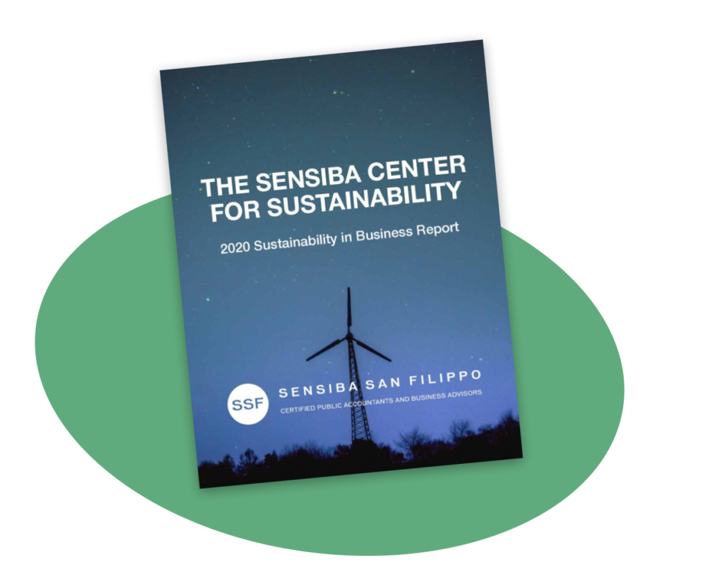Sustainability in Business 2020 Report