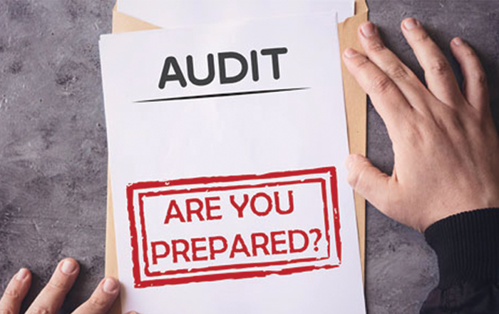 Prepare For IRS Audits